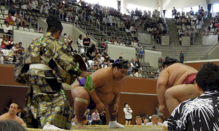 Sumo The Traditional Japanese Wrestling Bushu News The Swiss News Portal For Martial Arts And Martial Arts